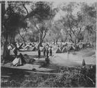 L'organisation des camps (mars - mai 1916) : Camp de Maisonghi. Camp du 14ème régiment de Zimok